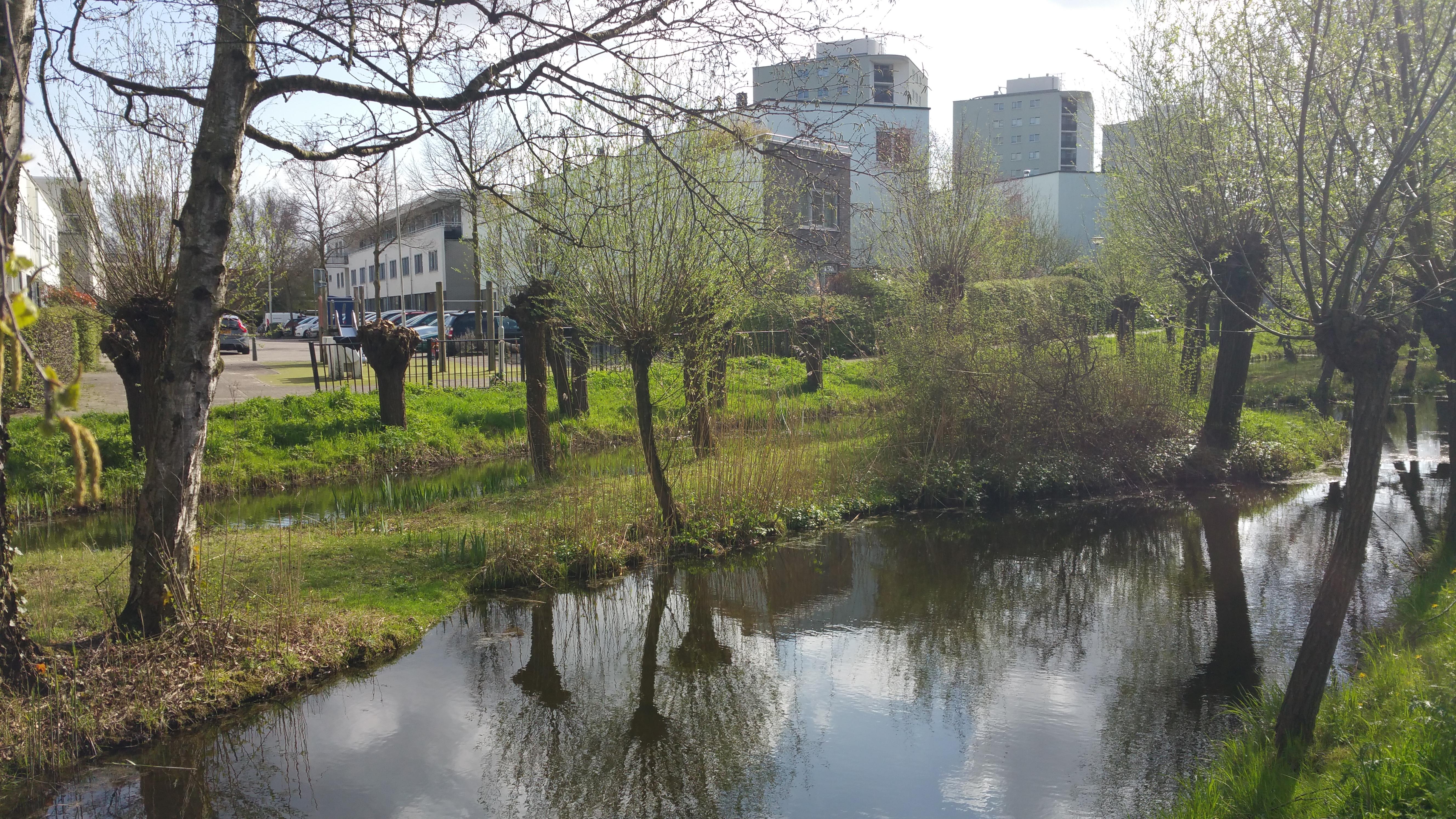 foto else roza waarderende gemeenteontwikkeling gemeente als oase